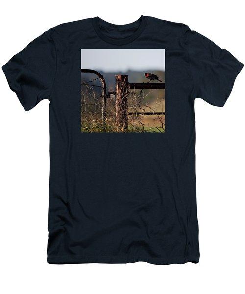 Eary Morning Blackbird Men's T-Shirt (Athletic Fit)