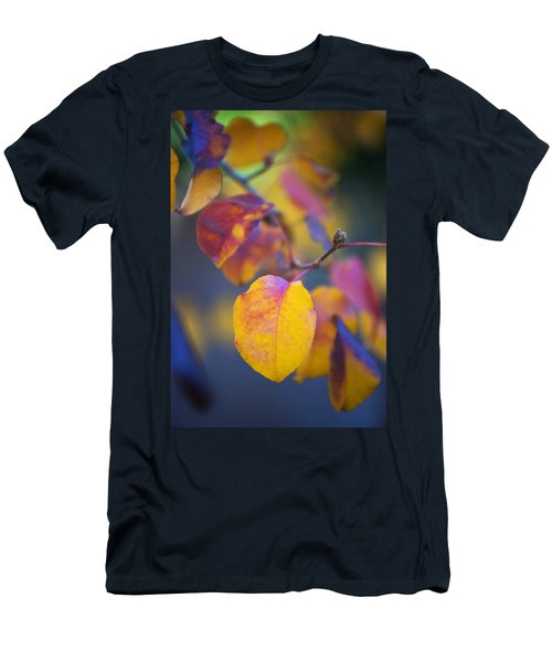 Fall Color Men's T-Shirt (Slim Fit) by Stephen Anderson