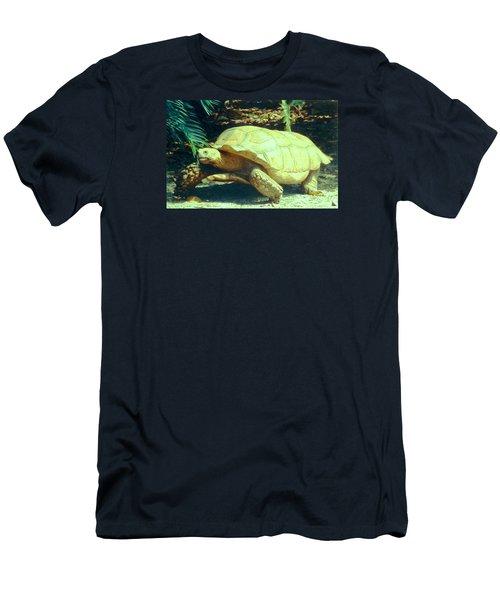 Golden Galapagos  Men's T-Shirt (Slim Fit) by Belinda Lee