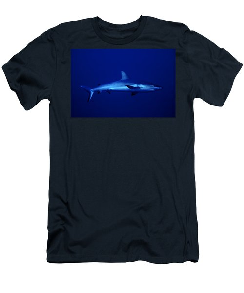 Gray Reef Shark Men's T-Shirt (Athletic Fit)