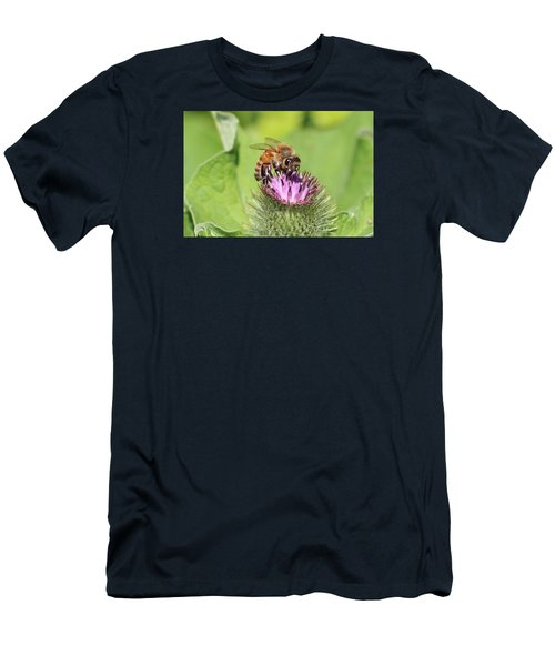 Honeybee On Burdock Men's T-Shirt (Athletic Fit)