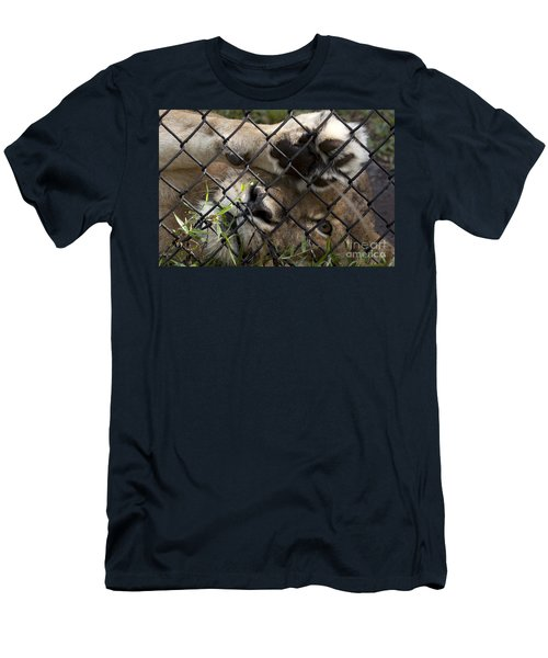 I Want To Go Home - Female African Lion Men's T-Shirt (Athletic Fit)