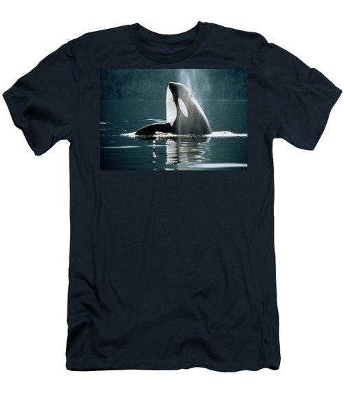 Killer Whale Orcinus Orca Head Men's T-Shirt (Athletic Fit)