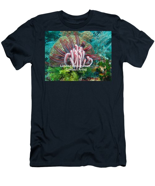 Komodo Island 6 Men's T-Shirt (Athletic Fit)
