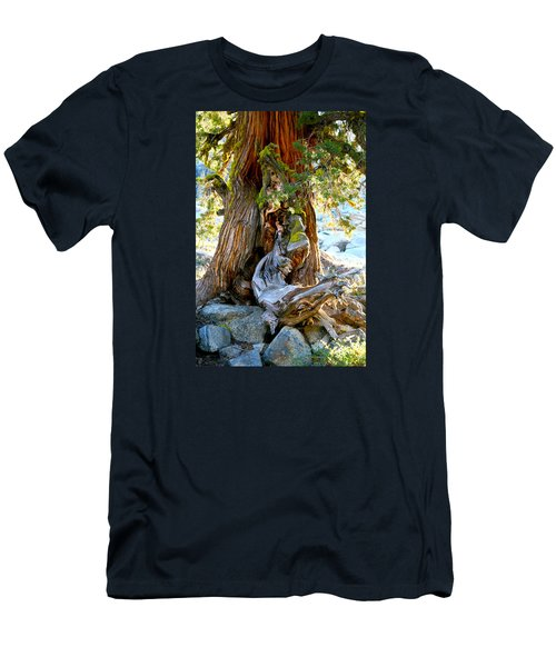 Lovely Tree Maiden Men's T-Shirt (Athletic Fit)