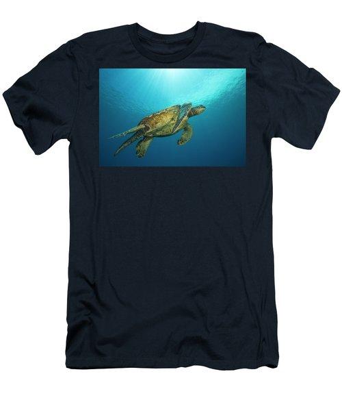 Male Green Sea Turtles  Chelonia Mydas Men's T-Shirt (Athletic Fit)