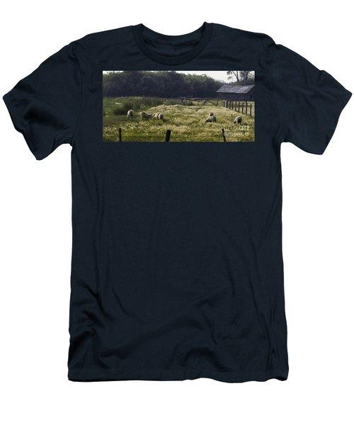 Montana Graze Men's T-Shirt (Athletic Fit)