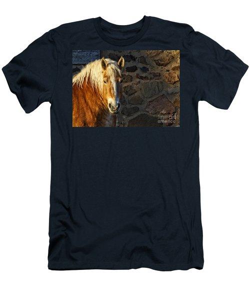 Mr. Handsome Men's T-Shirt (Athletic Fit)