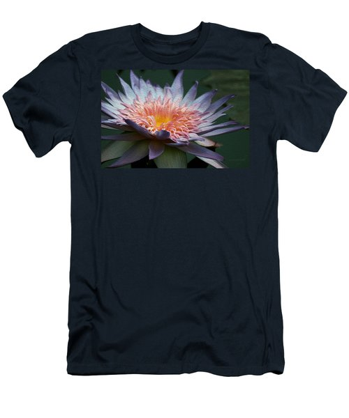 Nature's Baroque Men's T-Shirt (Slim Fit) by Yvonne Wright