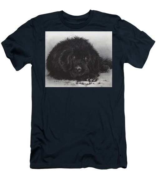 Newfoundland Men's T-Shirt (Athletic Fit)