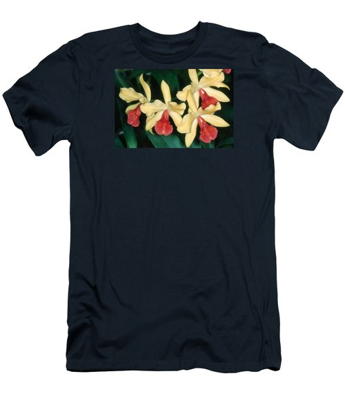 Orchid 11 Men's T-Shirt (Slim Fit) by Andy Shomock