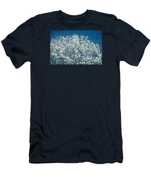 Pear Blossoms Men's T-Shirt (Athletic Fit)