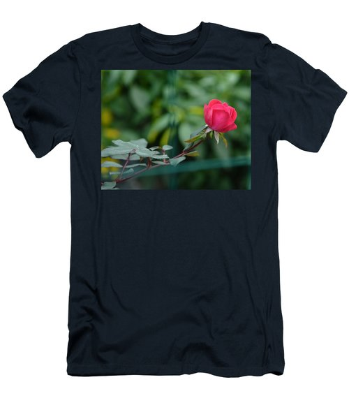 Men's T-Shirt (Slim Fit) featuring the photograph Red Rose I by Lisa Phillips