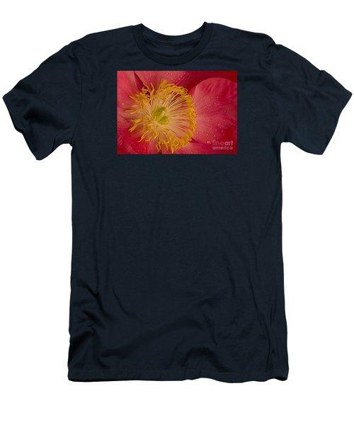 Salmon Dream Men's T-Shirt (Athletic Fit)