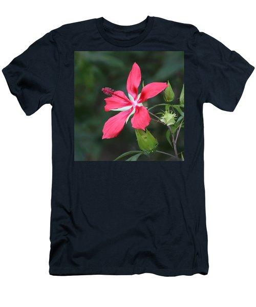 Scarlet Hibiscus #3 Men's T-Shirt (Athletic Fit)