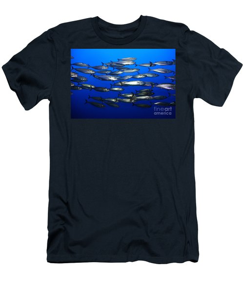 School Of Pacific Sardines 5d24927 Men's T-Shirt (Athletic Fit)