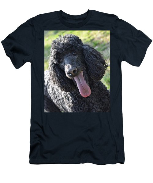 Standard Poodle Men's T-Shirt (Athletic Fit)