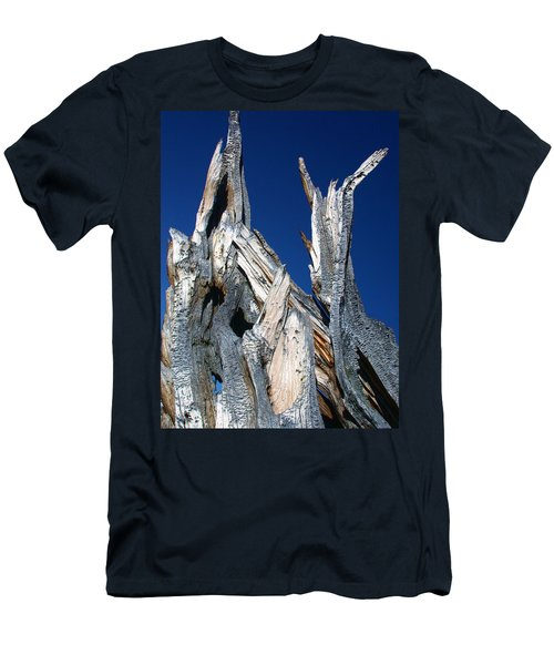 Steeple Roots Men's T-Shirt (Athletic Fit)