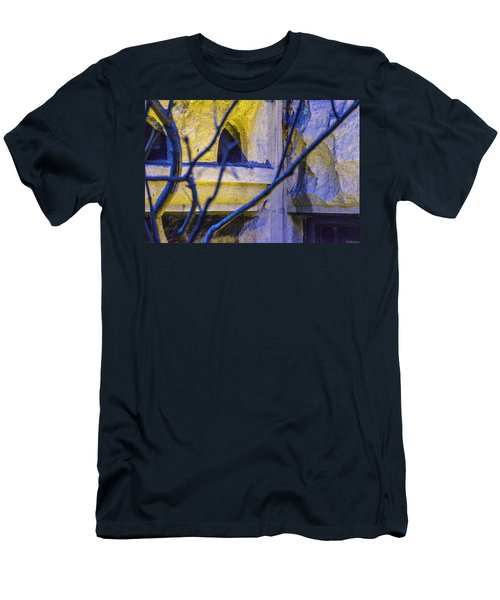 Stone Abstract One Men's T-Shirt (Athletic Fit)