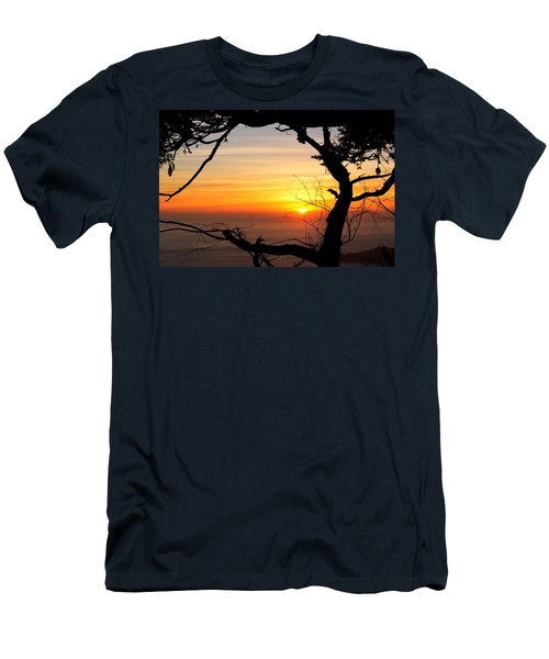 Sunset In A Tree Frame Men's T-Shirt (Athletic Fit)