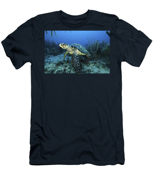 The Beauty Hawksbill Men's T-Shirt (Athletic Fit)