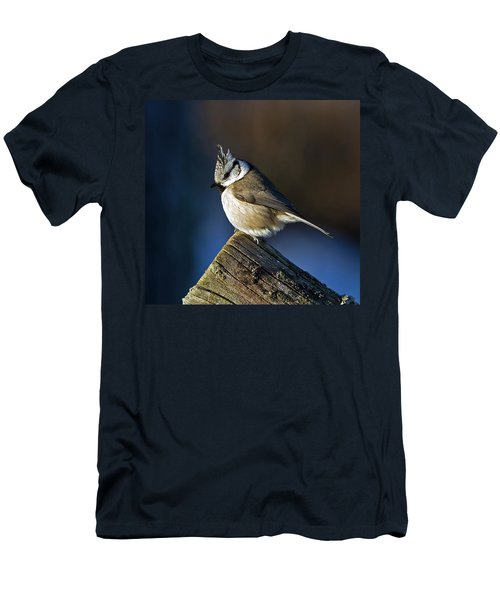 The Crested Tit In The Sun Men's T-Shirt (Athletic Fit)