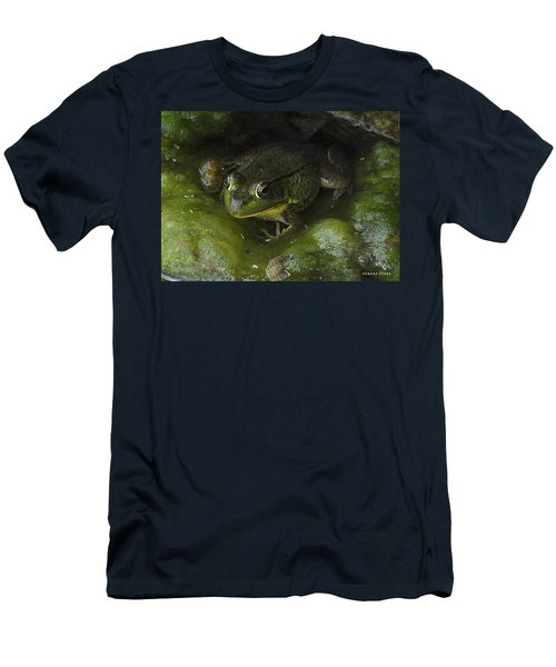 The Frog Men's T-Shirt (Athletic Fit)