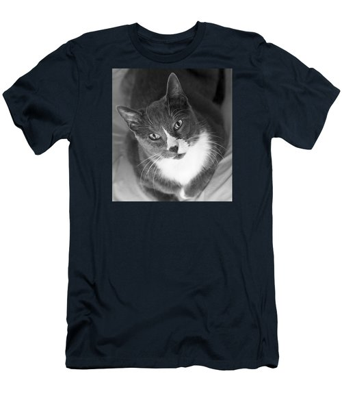 Devotion - Cat Eyes Men's T-Shirt (Slim Fit) by Jane Eleanor Nicholas