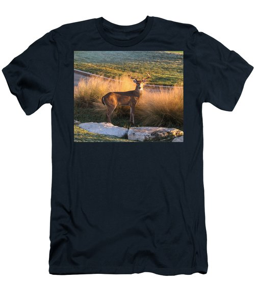 White Tail Men's T-Shirt (Athletic Fit)