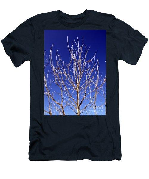Winter Tree Men's T-Shirt (Athletic Fit)