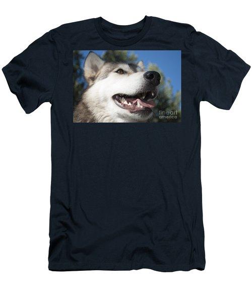 Wolf Men's T-Shirt (Athletic Fit)