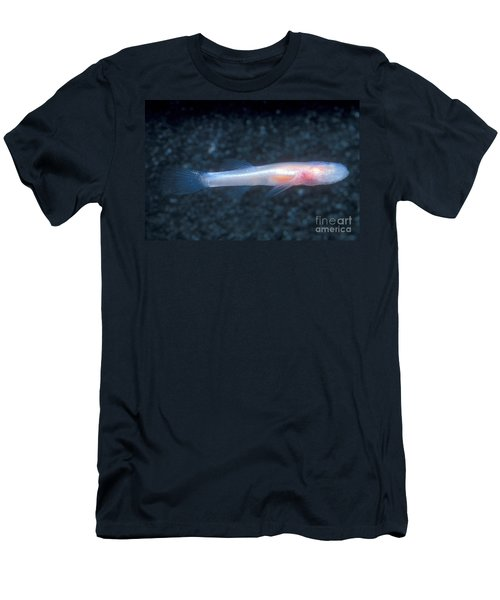Southern Cave Fish Men's T-Shirt (Athletic Fit)