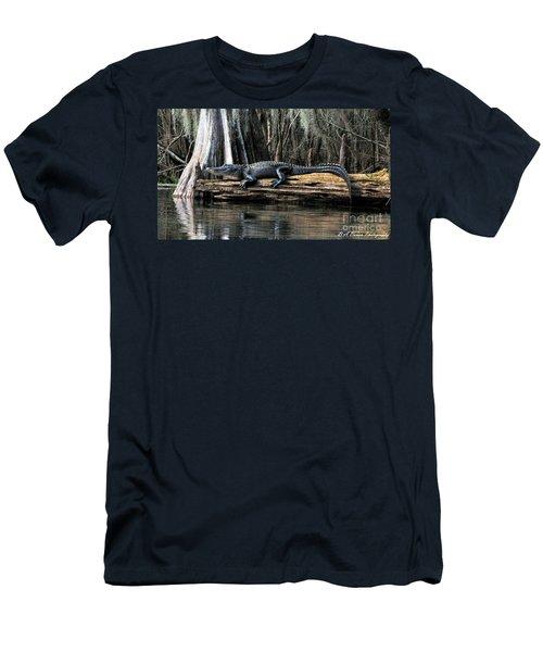 Alligator Sunning Men's T-Shirt (Athletic Fit)