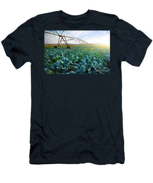 Cabbage Growth Men's T-Shirt (Slim Fit) by Carlos Caetano