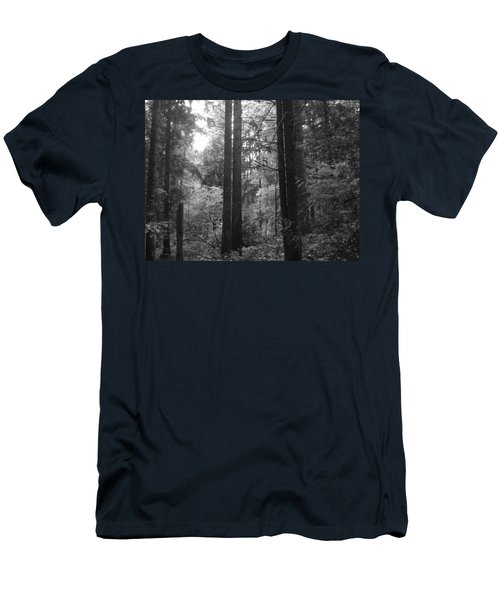 Into The Wood Men's T-Shirt (Athletic Fit)