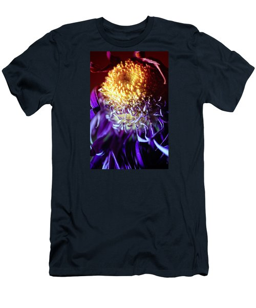 Dying Purple Chrysanthemum Flower Background Men's T-Shirt (Slim Fit) by John Williams