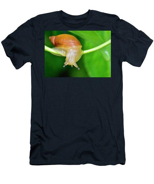 Morning Snail Men's T-Shirt (Athletic Fit)