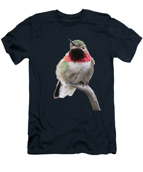 Broad-tailed Hummingbird Men's T-Shirt (Slim Fit) by Shane Bechler