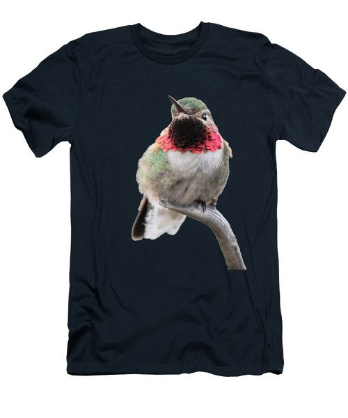 Broad-tailed Hummingbird Men's T-Shirt (Athletic Fit)