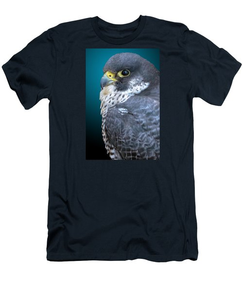Peregrine Falcon Men's T-Shirt (Slim Fit) by Brian Stevens