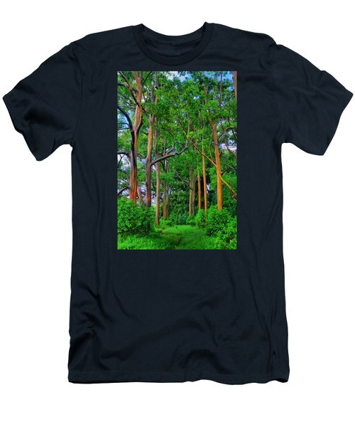 Amazing Rainbow Eucalyptus Men's T-Shirt (Athletic Fit)