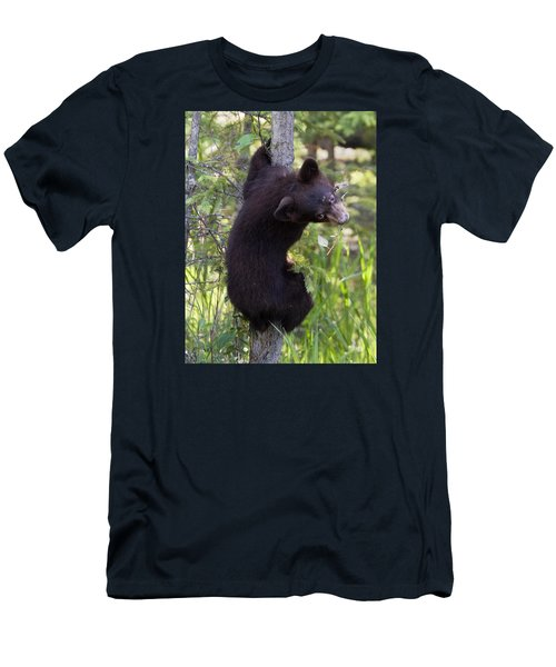 Bear Cub On Tree Men's T-Shirt (Athletic Fit)