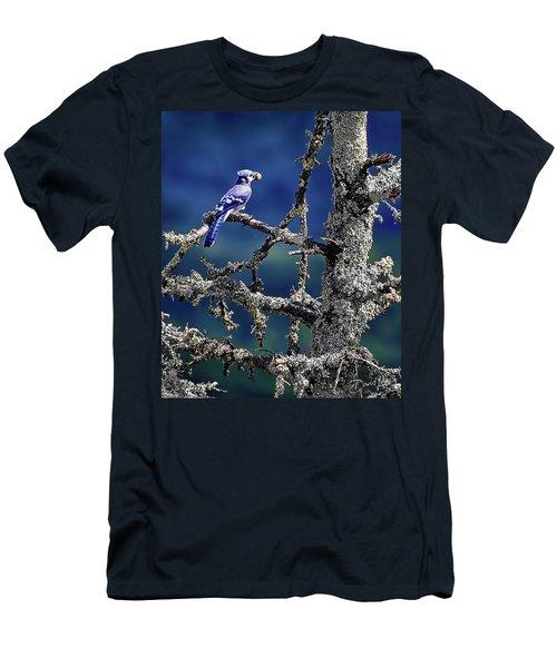 Blue Jay Mountain Men's T-Shirt (Athletic Fit)