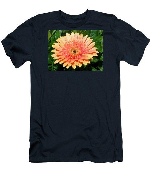 Blushing Zinnia Men's T-Shirt (Athletic Fit)