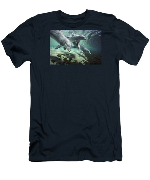 Men's T-Shirt (Athletic Fit) featuring the photograph Four Bottlenose Dolphins Hawaii by Flip Nicklin
