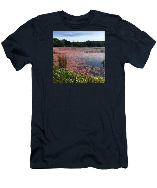 Cape Cod Cranberry Bog Men's T-Shirt (Athletic Fit)
