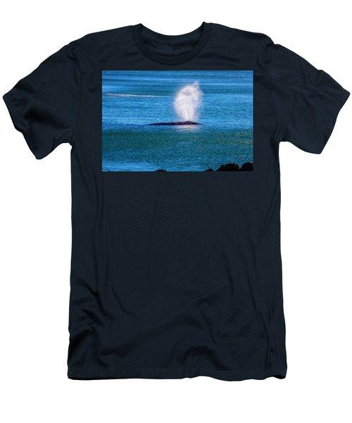 Coastal Gray Whale Men's T-Shirt (Athletic Fit)