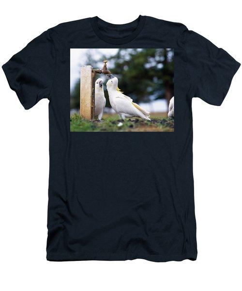 Cockatiel Nymphicus Hollandicus Men's T-Shirt (Athletic Fit)
