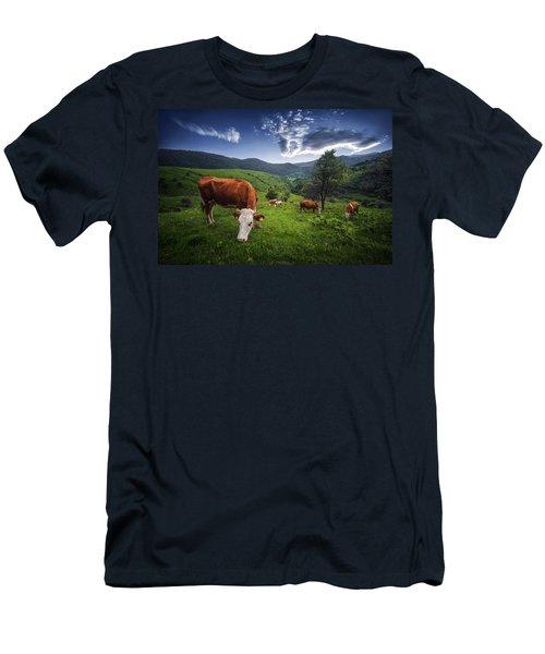 Cows Men's T-Shirt (Slim Fit) by Bess Hamiti