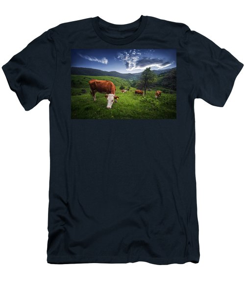 Cows Men's T-Shirt (Athletic Fit)